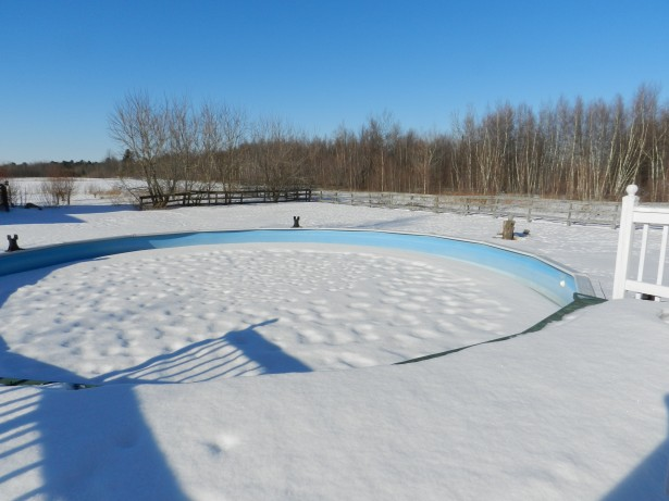 Should you drain your pool every winter crystal pools - Draining a swimming pool may be a bad idea ...